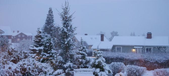 Säsongens första snöfall!